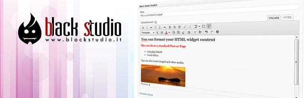 Manejar un Widget en Wordpress con modo Visual