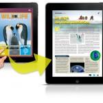 3 formas ideales de manejar nuestros enlaces en un blog de WordPress