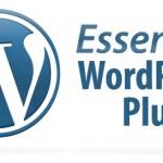 ¿Cuáles son los plugins más importantes para usar en WordPress?