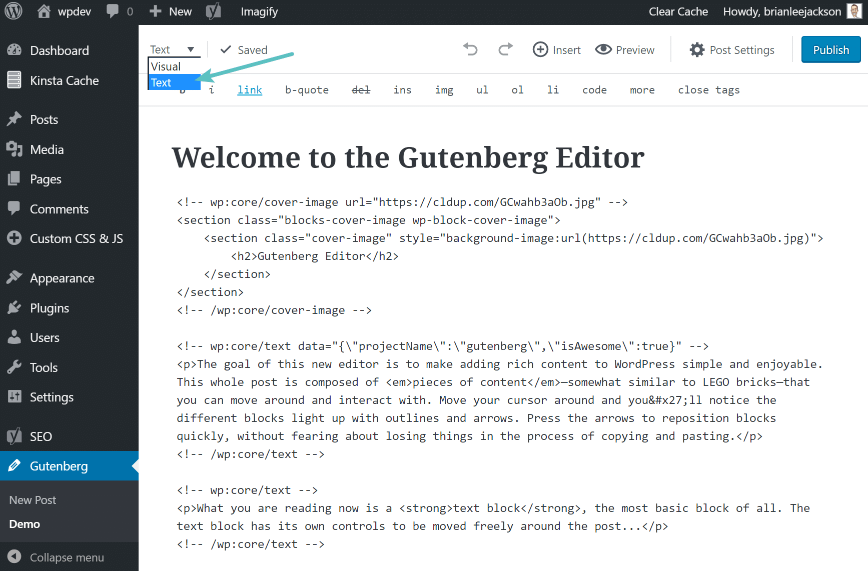 C:\Users\-_Antonio_-\Downloads\Editor-de-texto-de-Gutenberg.png